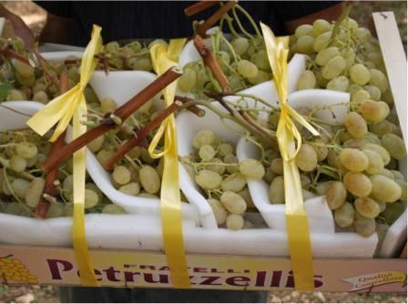 Uva da tavola a bacca bianca con semi variet pizzutello e regina news silvio fritegotto - Uva da tavola bianca ...